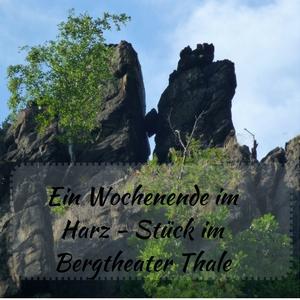 Das Bild zeigt ein Felsgebilde im Harz