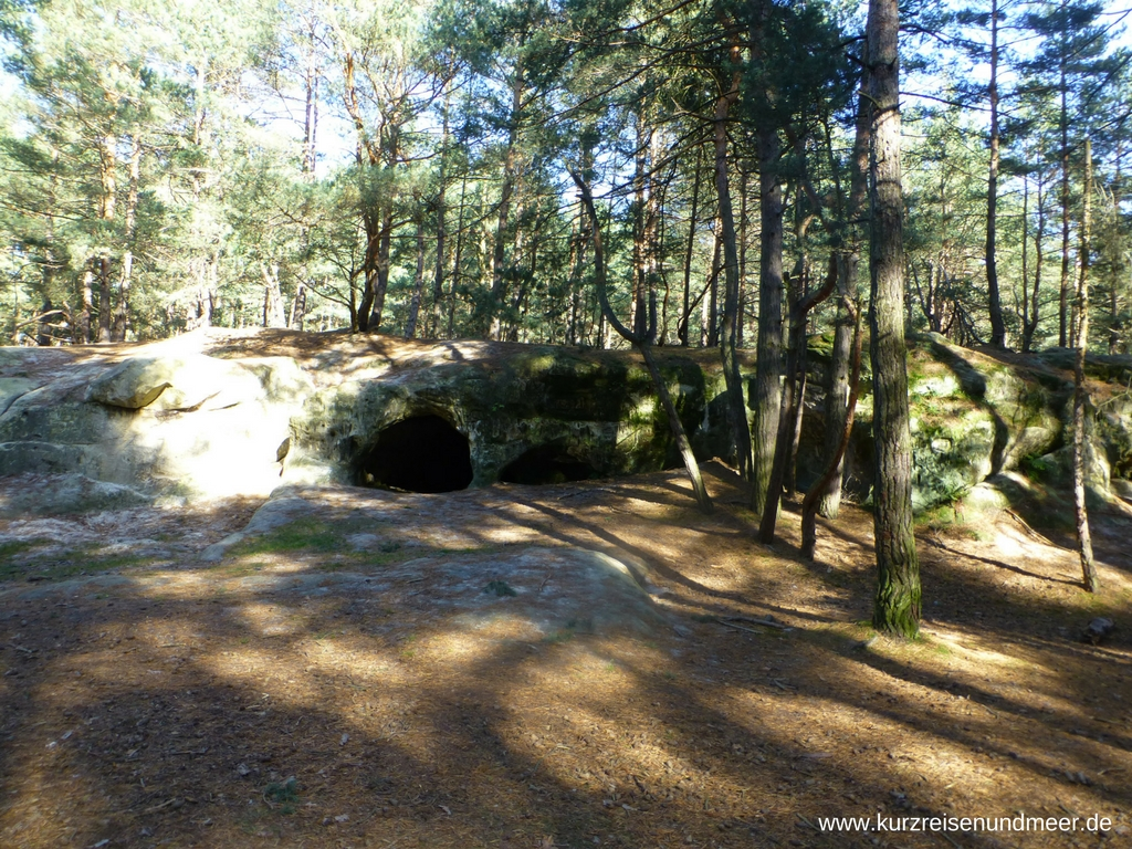 Im Wald entdeckt: Die kleinen Sandhöhlen