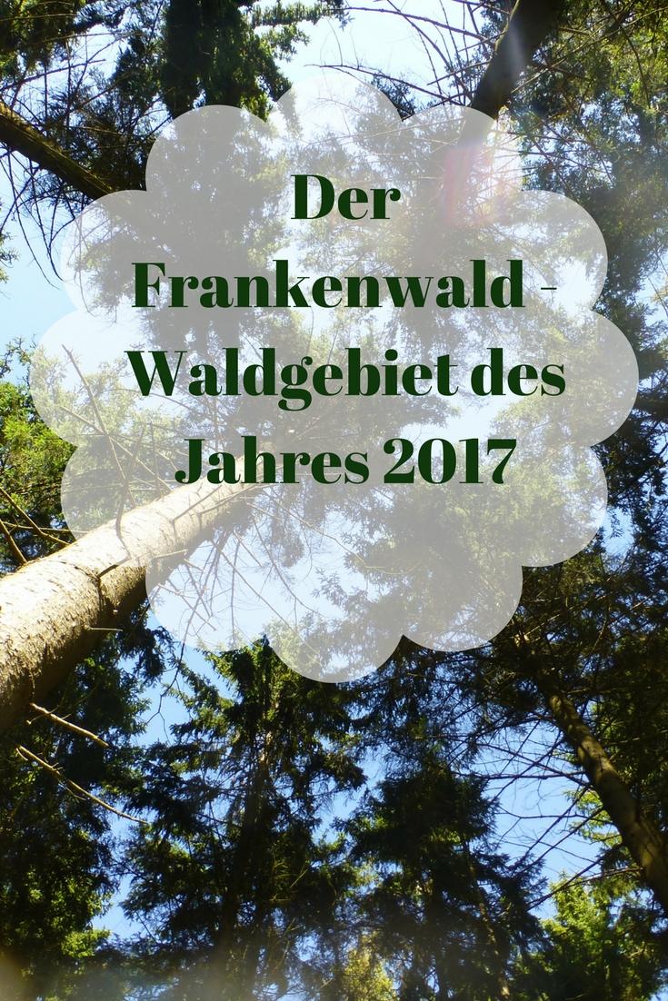 Warst Du schon einmal im Frankenwald? Er ist das Waldgebiet des Jahres 2017 aber auch ab 2018 eine Reise wert!