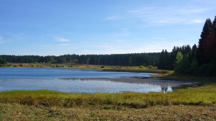 Oberharzer Wasserregal - Hirschtaler Teich
