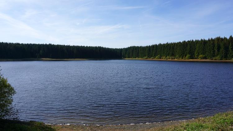 Oberharzer Wasserregal - der Jägersbleker Teich