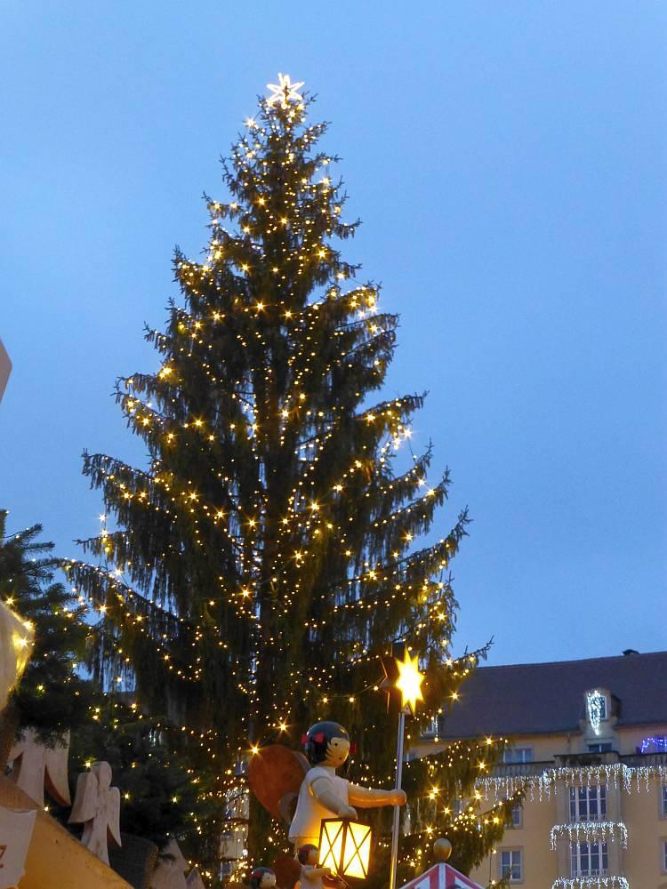 Weihnachtsbaum auf dem Dresdner Striezelmarkt