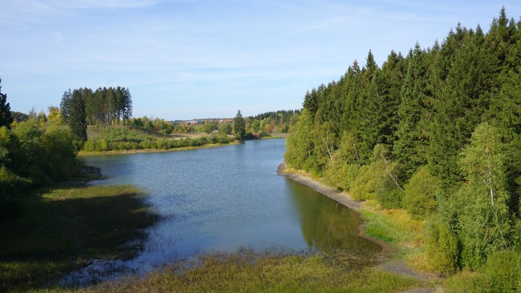 Teich im Oberharzer Wasserregal