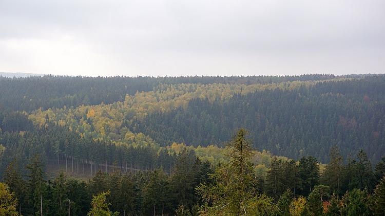 FrankenwaldSteigla: Blick auf das Grüne Band