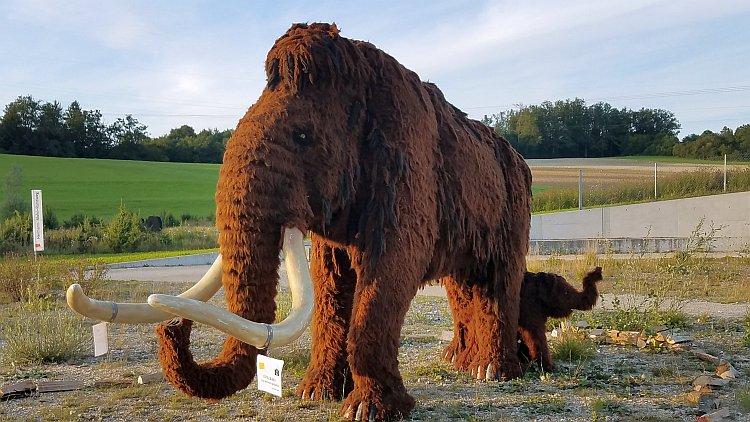Nachbildung eines Mammuts