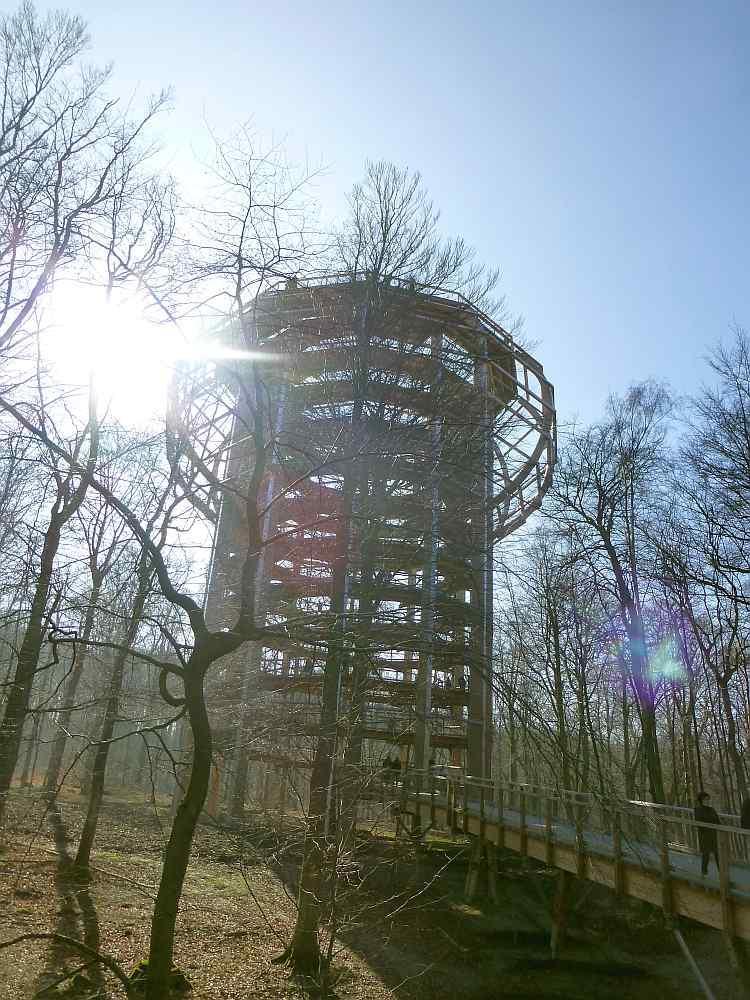 Rügen Architektur Baumwipfelpfad